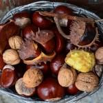 Autunno, tempo di castagne in Italia: le offerte