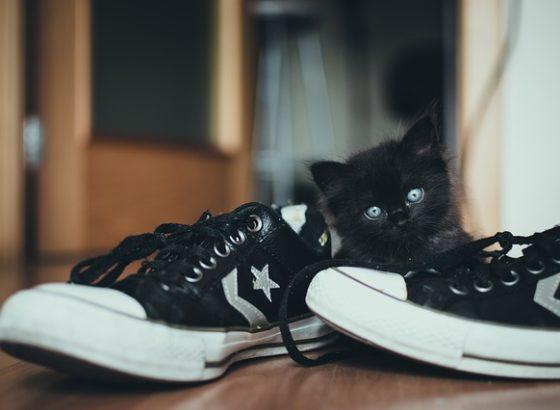 perché togliersi le scarpe in casa