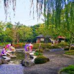 Guida agli Onsen: cosa sono, come comportarsi e quali sono i più belli
